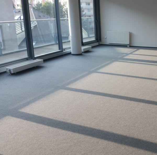 Pořizujete si zátěžový koberec? Přečtěte si, jak ho správně vybrat